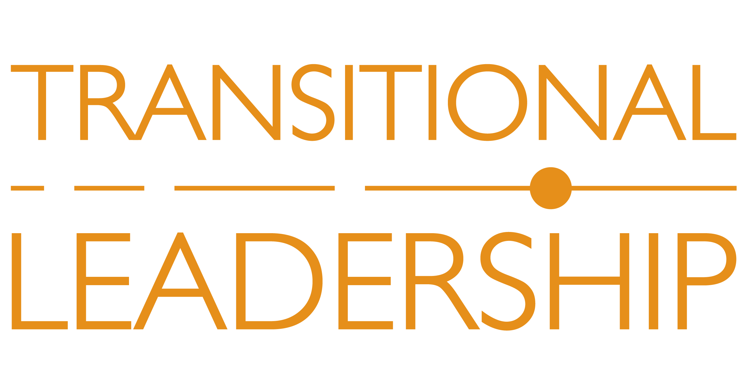 Transitional Leadership – System Director of Care Management – Case #2062